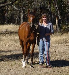 Benefits Of Lymphatic Massage For Horses: Naturally Detoxify And Support The Equine Immune System