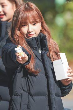 Yu Jin, Japanese Girl Group, Girly Pictures, Kim Min, Pledis Entertainment, Korean Celebrities, Female Singers, The Wiz, Kpop Girls