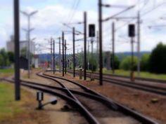 ZWalk – Wanderungen rund um Zwettl im Waldviertel (www.zwalk.at/) » Bahnhof Vitis Railroad Tracks, Wind Turbine, Woodland Forest