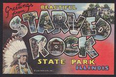 Starved Rock State Park-Illinois-Large Letter Greeting-Linen-Vintage Postcard