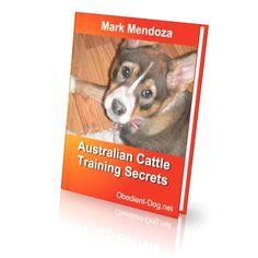 http://obedient-dog.net/dog-breeds/australian-cattle-dog-training-secrets.html