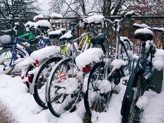 Switzerland. Canton Ticino. Lugano. Snow in the winter. Bicycles covered with snow. 29.01.2012 © 2012 Didier Ruef..