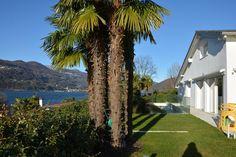 """Luxuriöse Villa mit Seeparzelle - """"an entertainer's dream"""" - Montagnola, Schweiz - Wetag Consulting"""