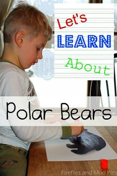 Let's Learn About: Polar Bears - Fireflies and Mud Pies