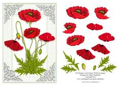 Red Poppies Card Topper With Decoupage on Craftsuprint designed by Elaine Sheldrake - Poppy cards are always much loved and these poppies are really beautiful. Perfect for all sorts of occasions including Birthdays, Get Well, Thank You, Anniversary to name but a few. Can be used as a quick card front, or if you have a little more time to decoupage it and you want to make it special. - Now available for download!