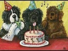 Happy Birthday Dog Meme, Dog Birthday Wishes, Birthday Banners, Birthday Greetings, Birthday Cards, Landseer Dog, Cute Puppies, Dogs And Puppies, Newfoundland Puppies