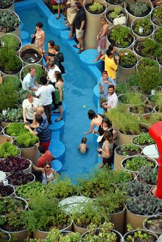 Public Farm One, NY - An Urban farming experience. Farming in public places.