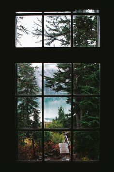benngie:   View from the loft. - Tree Porn - Beautiful Photographs of Trees, Forests and Woods.