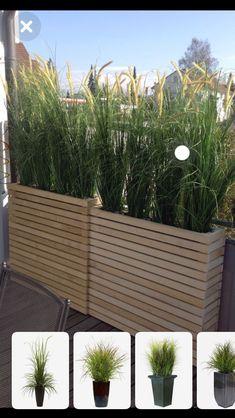 31 new ideas for apartment patio privacy plants planter boxes Backyard Patio Designs, Backyard Landscaping, Diy Patio, Apartment Balcony Garden, Apartment Plants, Privacy Plants, Garden Privacy, Patio Planters, Garden Deco