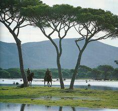 Maremma-Tuscany(Italy)  Butteri-Italian Cowboy.