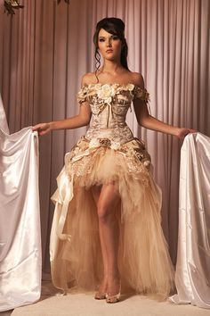 Steampunk Wedding Dress Vintage-Inspired This beautiful, one of a kind, vintage-inspired wedding dress is composed of three pieces: a corset top, a high-low silk/lace/satin pick-up skirt, and a high-low tulle petticoat. Bridal Dresses, Wedding Gowns, Prom Dresses, Dress Prom, Ivory Wedding, Dama Dresses, Corset Dresses, Gothic Wedding, Party Gowns