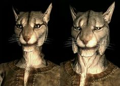 (29th in the Elder Scrolls lore) -Author Rob Evans-  These are the Khajiit of Elsweyr,most of there species look much like cats while other members of there species look much like elves there are in fact 17 different types of Khajiit,the Khajiit are known for there natural agility,stealth and there skills of refining Moon Suger into Skooma which is a very addictive drug in Tamriel many races acknowledge there shady natural talents and place a automatic prejudice on them because of these in…