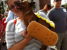 The weiner dog parade--definitely making an appearance in the fifth book!