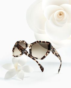 Prada hexagonal é tendência ♥♥  #love #prada #sunglasses #solar #modasolar #oculos #sol #escuros #lançamento #pradaeyewear #estampado #onça #flower #flor #oticaswanny