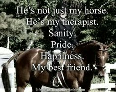 He's not just my horse. ..