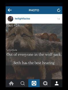 Twilight Facts #424
