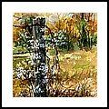Fence Post And Weeds Framed Print by Virginia Potter