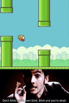 Flappy Bird and Doctor Who. Haha