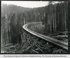 Moving Logs: a 19th century flume - Montana