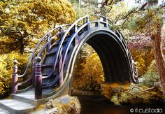 A decorative bridge in the Japanese tea garden at Golden Gate Park in San Francisco, California