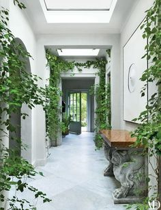 A skylit gallery bisects antiques dealer Betty Gertz's verdant residence, which she renovated with designer Axel Vervoordt; bougainvillea climbs the lime-painted plaster walls, and a canvas by Japanese artist Norio Imai surmounts an 18th-century marble console | archdigest.com