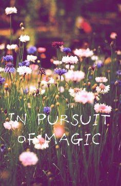 In pursuit of magic.