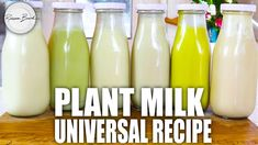 #Plant_based_milk #Plant_based_milk_Comparison #Plant_based_milk_Recipes #Plant_based_milk_Brands #Plant_based_milk_Best #Plant_based_milk_For_babies #Plant_based_milk_Diy #Plant_based_milk_Packaging #Plant_based_milk_Cows_milk #Plant_based_milk_Homemade #Plant_based_milk_Benefits Nut Milk Recipe, Milk Recipes, Cream Recipes, Plant Based Milk, Milk Plant, Vegan Hot Cross Buns, Crispy Polenta, Nut Milk Bag, Bagged Milk