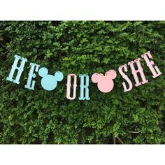 Gender Reveal Banner + Chalkboard. Mickey and Minnie theme by MyLaRoux on Etsy https://www.etsy.com/listing/271142778/gender-reveal-banner-chalkboard-mickey
