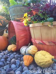 9 Easy Fall Decor Projects -