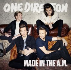 One Direction | Made In The A.M. | @emrosefeld |
