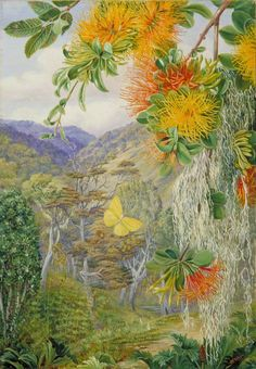 marianne north | Parasites on Beech Trees, Chili - Marianne North - WikiArt.org ...