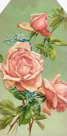 """Garden of the Heart"" ~ pink roses & forget-me-not."