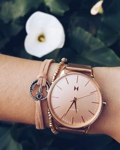 See this Instagram photo by @mvmtwatcheswomen • 5,185 likes