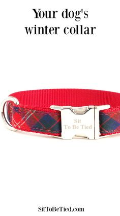 Wool dog collar for winter. Red and blue tartan plaid for the stylish dog.