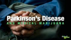 www.cannablogna.com Not smoked, but vaporized. It is no where near as dangerous as the useless drugs the FDA and physicians pump into Parkinson Patients! Please, when has the U.S. government ever been right? Please read the article and sign the petition. FIGHT for our Freedom just as our military does! Cannabis also treats PTSD! Our troops are coming home with record numbers of PTSD diagnoses.