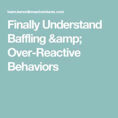 Finally Understand Baffling & Over-Reactive Behaviors