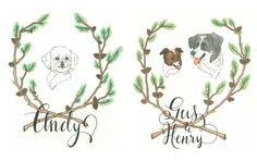 Portraits of Pets by Lauren Moyer, via Behance