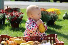 Baby Callan enjoys a gourd-geous fall weekend.