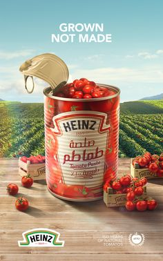 Heinz Tomato Paste on Behance