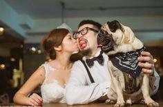 Darauf, dass der Hund jetzt mit aller Macht versucht, menschlich zu wirken, damit die Braut und der Bräutigam keine Kinder kriegen und ihn dann vernachlässigen.