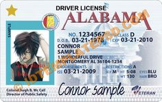 This is Albama (USA State) Drivers License PSD (Photoshop) Template. On this PSD Template you can put any Name, Address, License No. DOB etc and make your personalized Driver License.  You can also print this Albama (USA State) Drivers License from a professional plastic ID Card Printer and use as per your requirement.