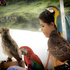 Linda foto né? Agora, com a BEAnimal, você pode oferecer uma tarde linda, agradável e inesquecível com as pessoas que você ama tendo essa experiência inesquecível com animais super lindos, bem comportados e treinados. Entre em contato conosco e veja nossa disponibilidade para se emocionar e deixar a rotina de lado. #Família #Family #petstagram #petbird #petstagram #Animal #photooftheday #unforgetable #inesquecível  #animalwelfare #BemEstarAnimal #BEAnimal #FazendoPose /  Now you can offer…