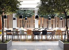 London studio Haptic has created a forest-like lounge at a hotel in Oslo, filled with trees, stacks of lumber and a plant-covered wall. The open-plan lounge is Hotel Lounge, Café Bar, Commercial Interiors, Commercial Design, Café Exterior, Oslo Hotels, Design Bar Restaurant, Interior Architecture, Interior Design