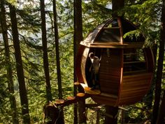 DIY dream treehouse in the wilds of Canada.