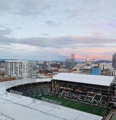 Portland Oregon, Marina Bay Sands, Paris Skyline, Building, Travel, Viajes, Buildings, Destinations, Traveling