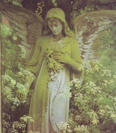 Image discovered by Lion-hearted girl. Find images and videos about green, angel and statue on We Heart It - the app to get lost in what you love. Cemetery Angels, Cemetery Statues, Cemetery Art, Statue Ange, I Believe In Angels, Angels Among Us, Angels In Heaven, Guardian Angels, Angel Art