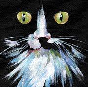 Black Cats Art - Colorful Cat by Natasha Denger