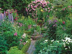 aménagement jardin avec une végétation abondante