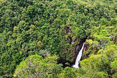 Catarata Rubel Chaim Reserva Ecológica Ram Tzul. #PostalesGT #Retoinstagrampl #QuePeladoGuate #Prensa_libre #Guatemala #mundochapin #milugarfavoritopl #picoftheday #perhapsyouneedalittleguatemala #guatevision_tv #gtmagica #visitGuatemala #QuebonitaGuate #natgeotravel #natgeo #photooftheday #pictureoftheday #fotodeldia #Cascada #waterfall #Wasserfall #cascade #滝 #瀑布 #водопад #شلال