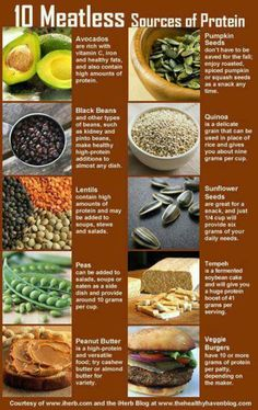 10 Meatless sources of Protein. I don't like the texture of veggie burgers but everything else is fantastic. Still need to try tempeh. #healthy #meatless